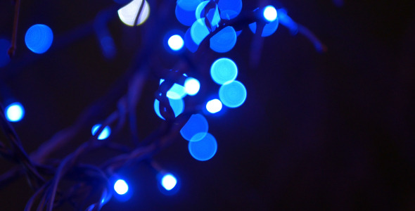 Tree and Blue Lights 1