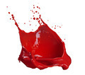 splash of red paint isolated on white - PhotoDune Item for Sale