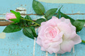 Artificial pink roses on grungy light blue wooden background - PhotoDune Item for Sale