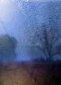 Rainy autumn landscape through a window with raindrops. - PhotoDune Item for Sale