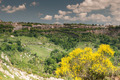 Nature of Lazio - PhotoDune Item for Sale