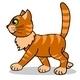 Cat's walk - ActiveDen Item for Sale