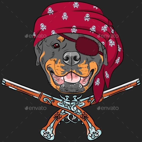 Rottweiler Pirate with Pistols
