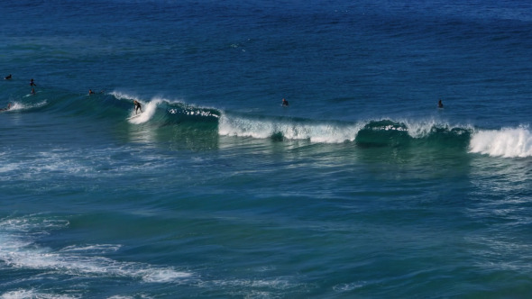 Surfing at Bondi Beach Sydney