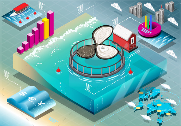 GraphicRiver Isometric Infographic of Breeding Oysters 10310129