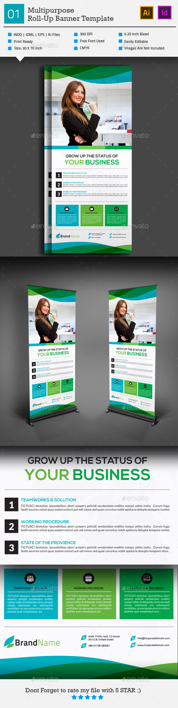 GraphicRiver Multipurpose Roll-Up Banner 01 10317039