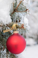 Red Christmas ornament on snowy tree - PhotoDune Item for Sale