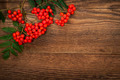 Mountain ash berries over wood - PhotoDune Item for Sale