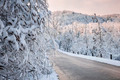 Scenic road in winter forest - PhotoDune Item for Sale