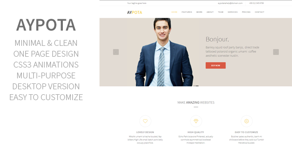 ThemeForest Aypota One Page Corporate Muse Template 10231607