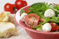Caprese Salad and bread - PhotoDune Item for Sale