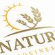 Wheat Sun Logo - GraphicRiver Item for Sale