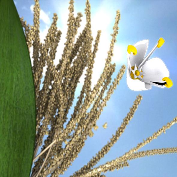 3DOcean Coconet flower 10334259