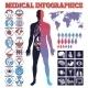 Medical Infographic Set - GraphicRiver Item for Sale