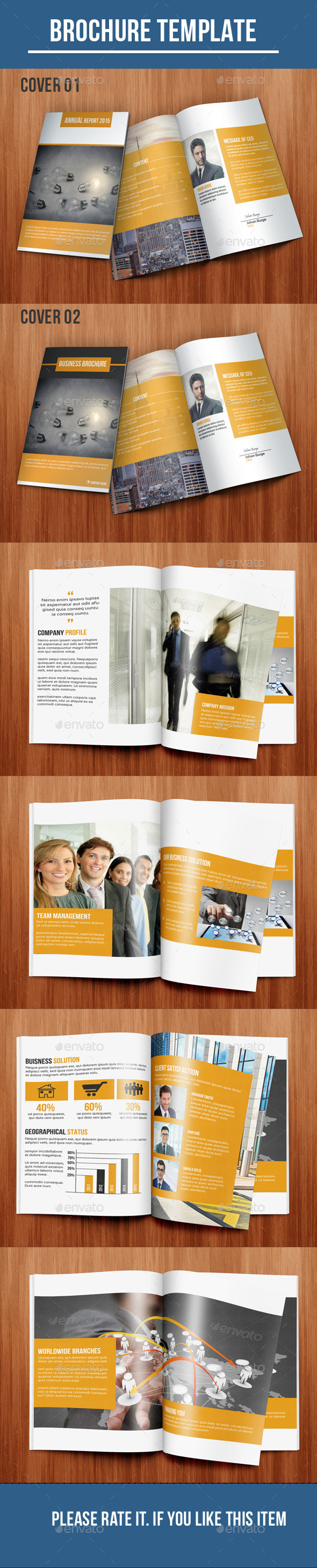 GraphicRiver Bi-Fold Business Brochure 10336085