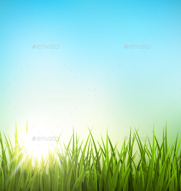 GraphicRiver Green Grass Lawn with Sunrise on Blue Sky 10336469