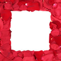 Frame from roses on birthday, Valentine's and mothers day with copyspace