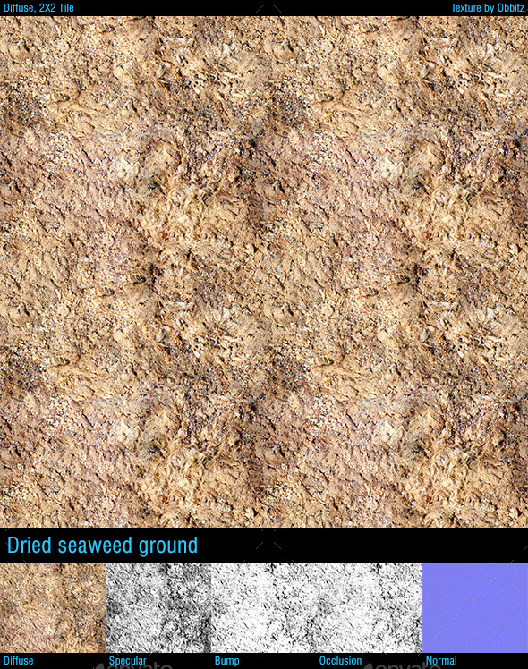 3DOcean Dried seaweed ground 10338004