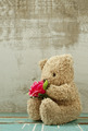 cute bear doll holding rose bouquet in vintage style - PhotoDune Item for Sale