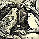 Spring drawing of birds and flowers - GraphicRiver Item for Sale