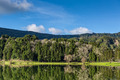 Beautiful Forest Landscape with Lake and Mountains - PhotoDune Item for Sale