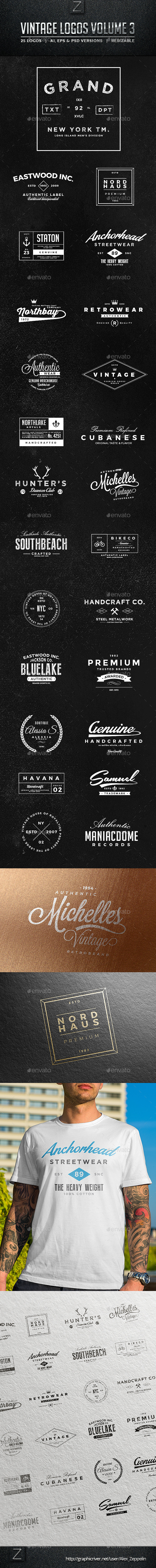 GraphicRiver Vintage Logos & Badges Set 3 10343472