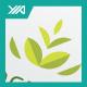 Eco Crown Leaf Logo - GraphicRiver Item for Sale