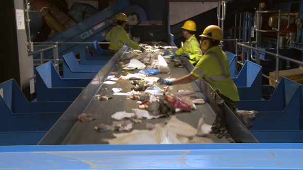 Trash Workers On A Conveyor 3 Of 10