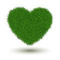 Grass heart - PhotoDune Item for Sale