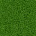 Grass texture - PhotoDune Item for Sale