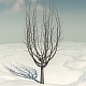 Winter Tree 1 - 3DOcean Item for Sale
