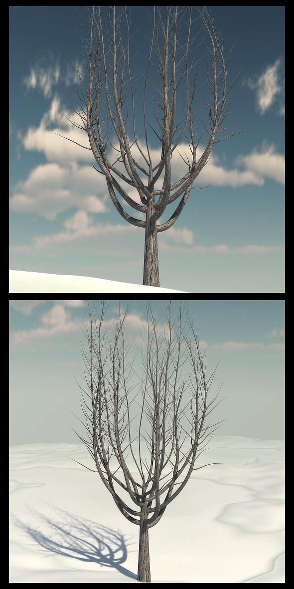 3DOcean Winter Tree 1 10351488