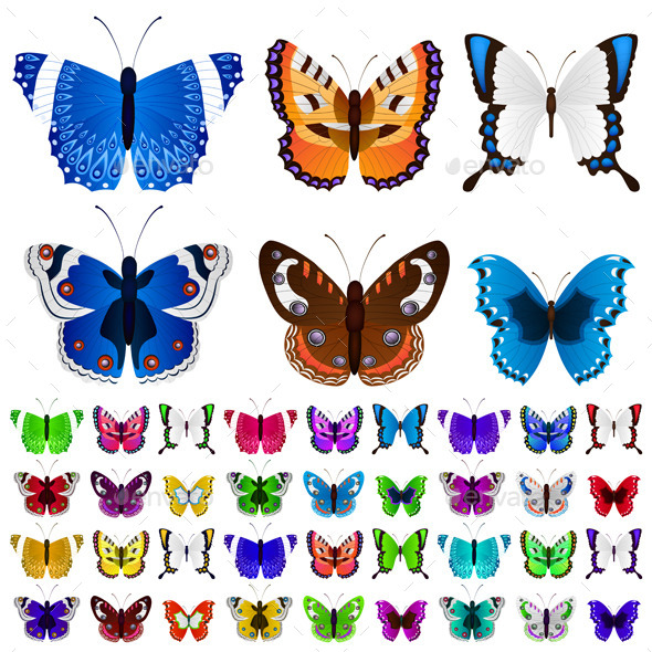 GraphicRiver Set of Colorful Butterflies 10353703