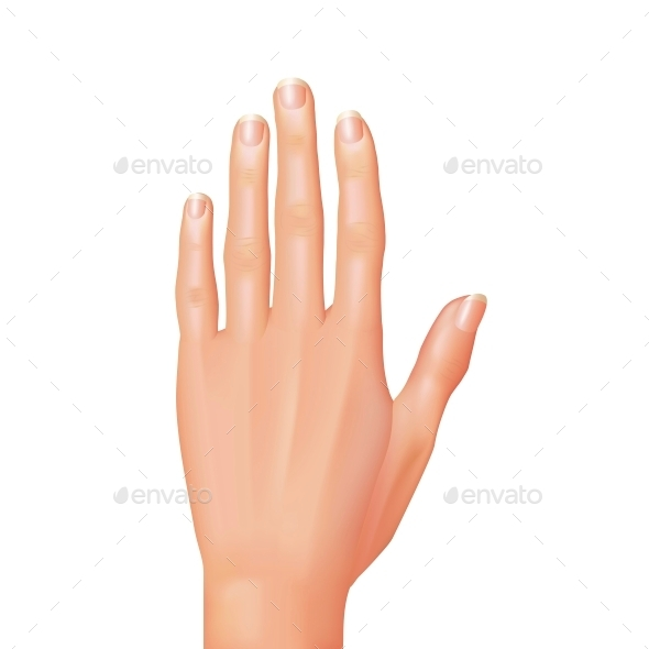 GraphicRiver Hand 10354078