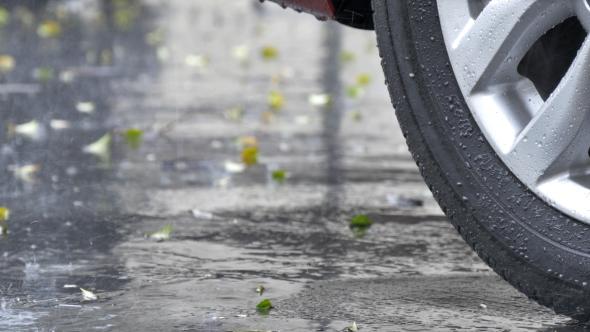 Wheel & Rain