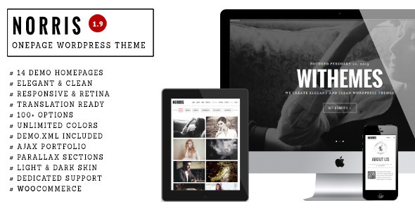 Norris - One page WordPress theme