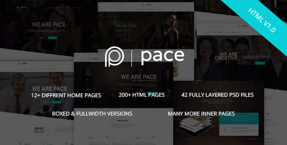 ThemeForest Pace Responsive MultiPurpose HTML5 Template 10358539
