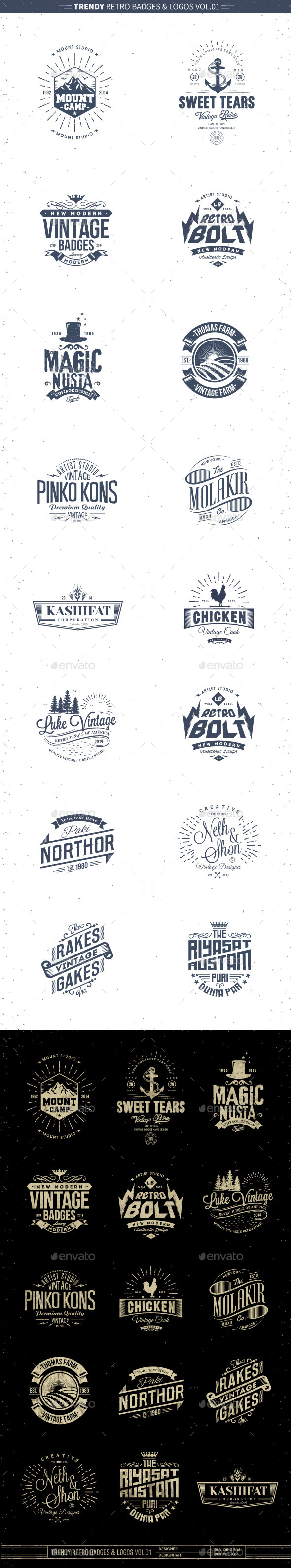 GraphicRiver Trendy Retro Badges and Logos Vol.01 10358811