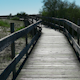 Walking on Wooden Walkway in the Sand Dunes - VideoHive Item for Sale