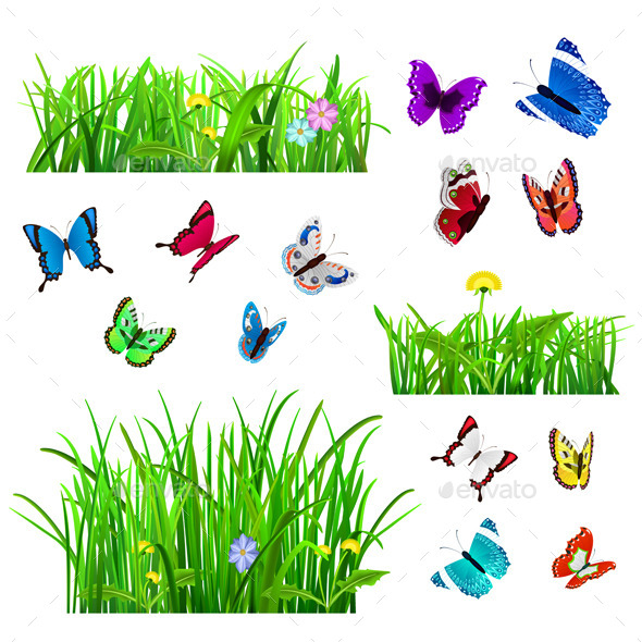 GraphicRiver Green Grass and Butterflies 10362399