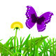 Green Grass and Butterflies - GraphicRiver Item for Sale