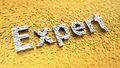 Pixelated Expert - PhotoDune Item for Sale