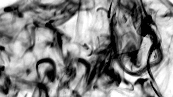 Luma Smoke