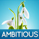 Ambitious - Business & Portfolio HTML CSS Theme - ThemeForest Item for Sale