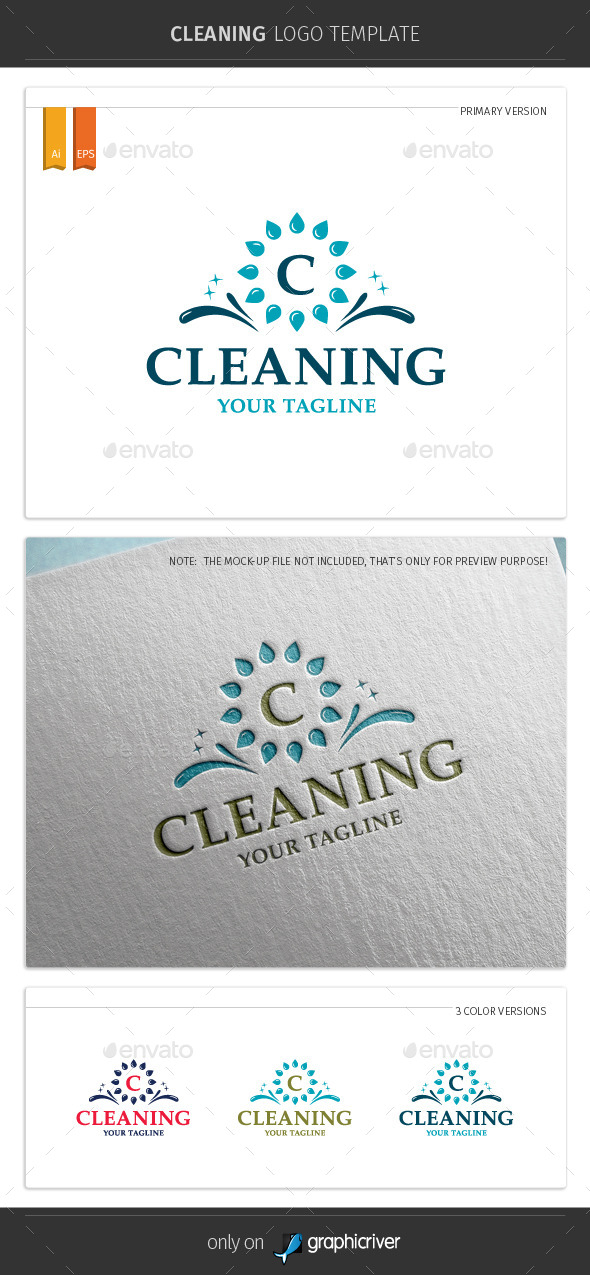 GraphicRiver Cleaning Logo Template 10369464