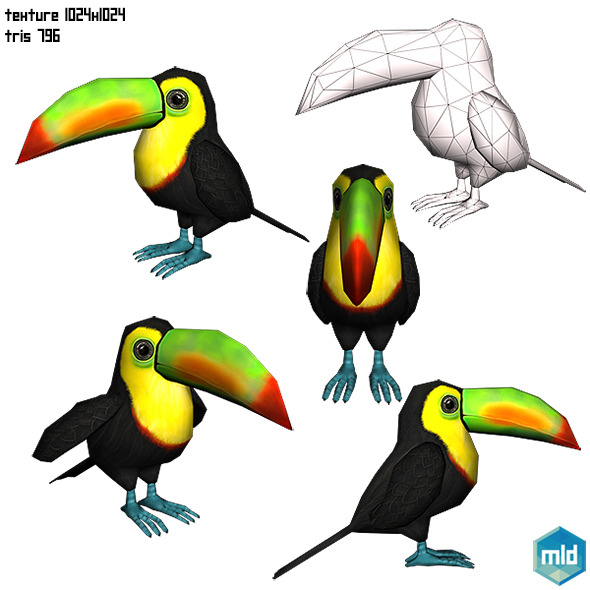 Toucan Parrot - 3DOcean Item for Sale
