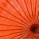 Underside of red fabric umbrella - PhotoDune Item for Sale