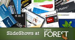 SlideShows at ThemeForest