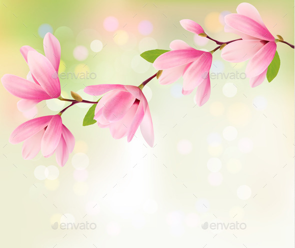 Spring Background with Blossom of Flowers