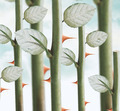 rose thorns - PhotoDune Item for Sale